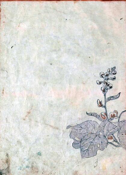 鳥山石燕の画像 p1_34