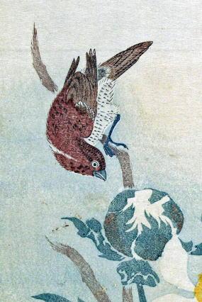 北尾政美の画像 p1_28